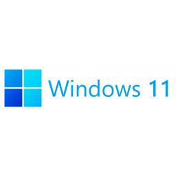 Windows 11 Professional...
